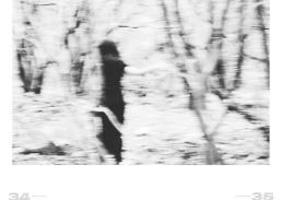 photographer // riccardo la valle