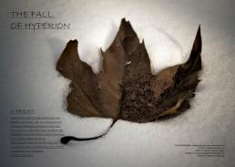 fall-of-hyperion-01